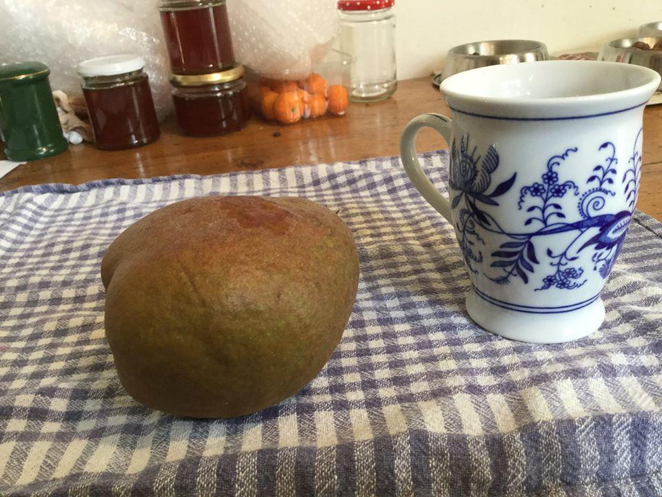 whole raw black pear