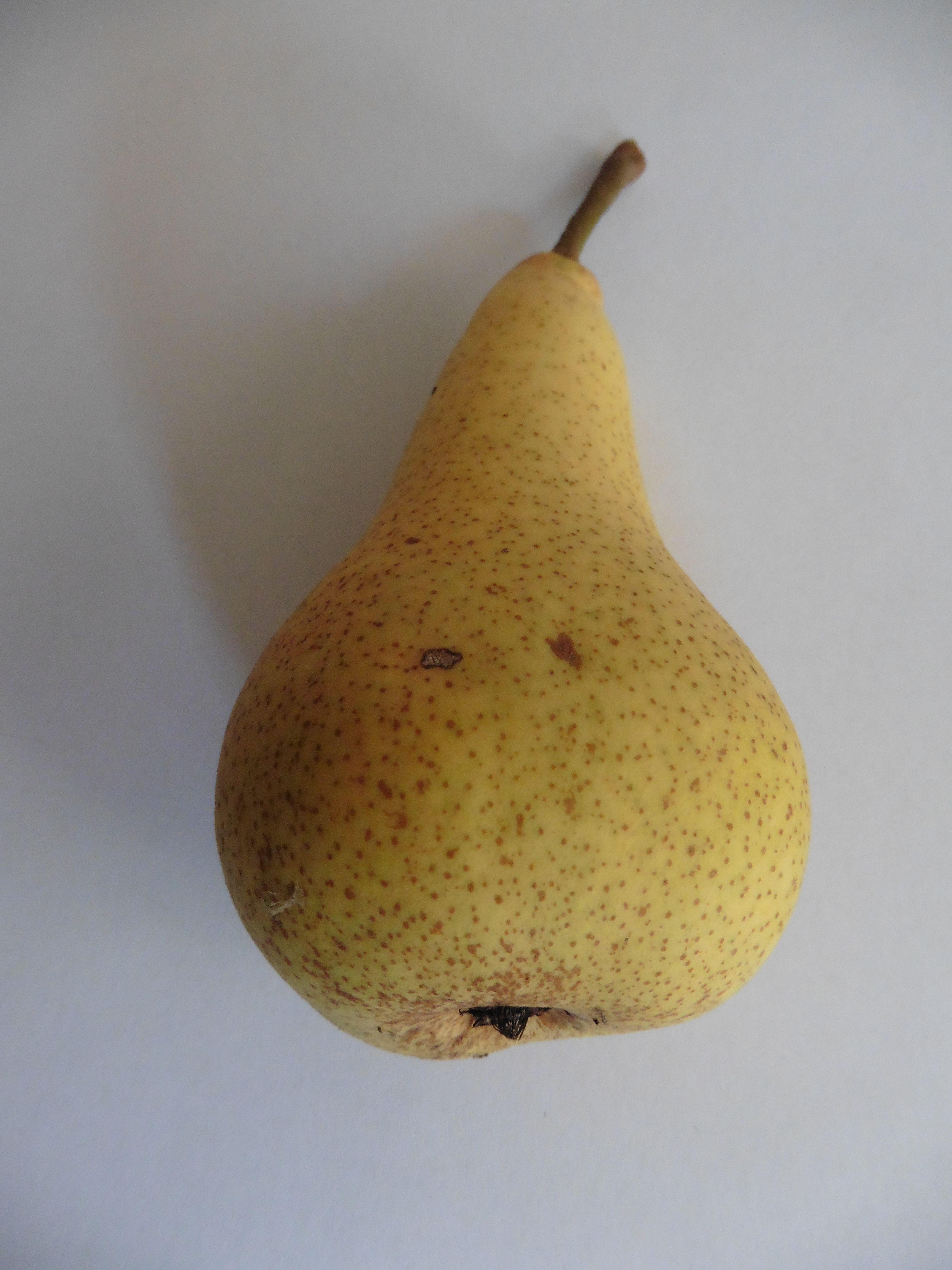 Deacons pear